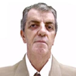 Miguel Roberto Gomes Viotto