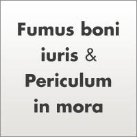 Fumus Boni Iuris e Periculum In Mora